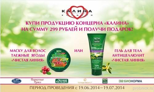 Podrugka_Kalina
