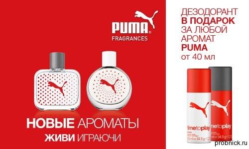 Podrugka_puma