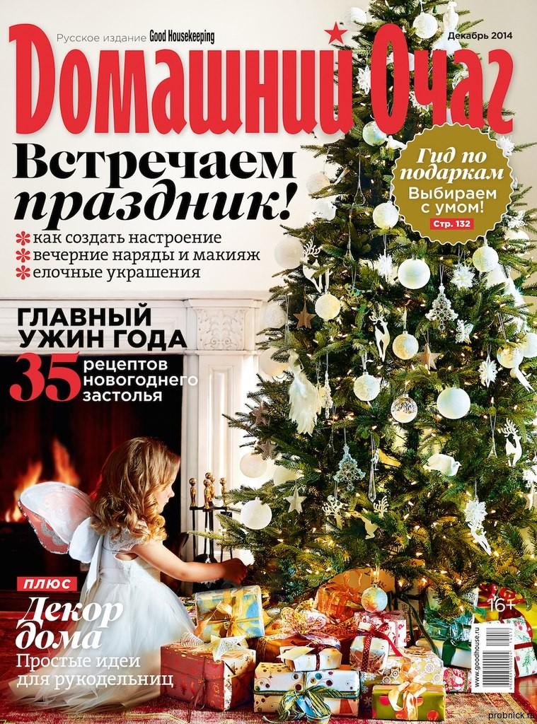 Domashniy_ochag_december_2014
