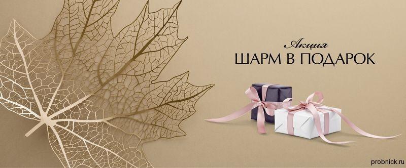 charm_gift_november