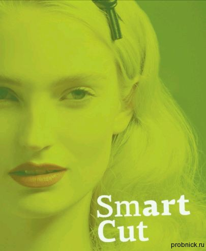 smartcut_1