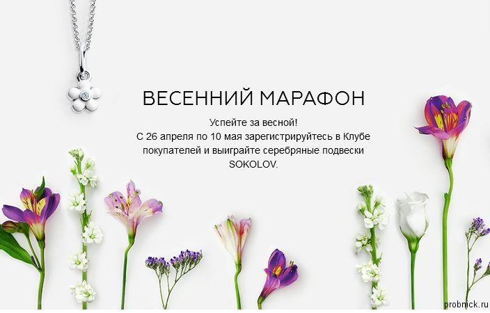 Sokolov_may_2016