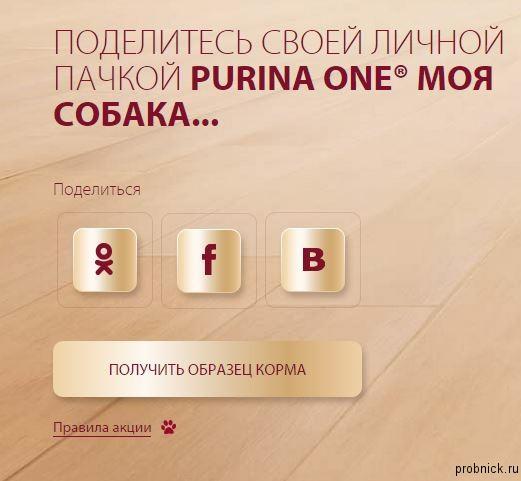 purina(4)