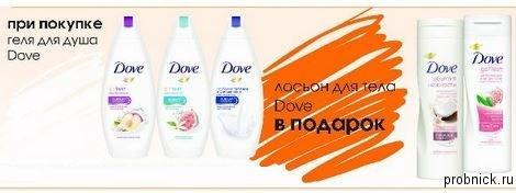 ylibka_dove