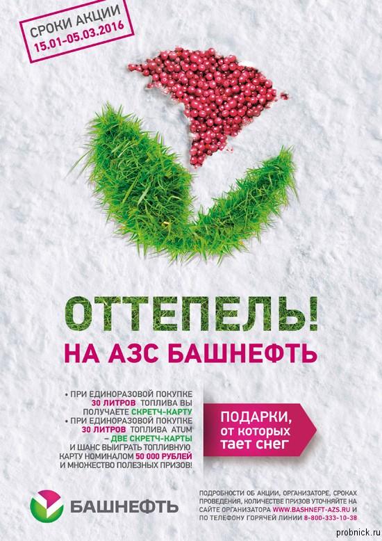 Bash_neft_2016