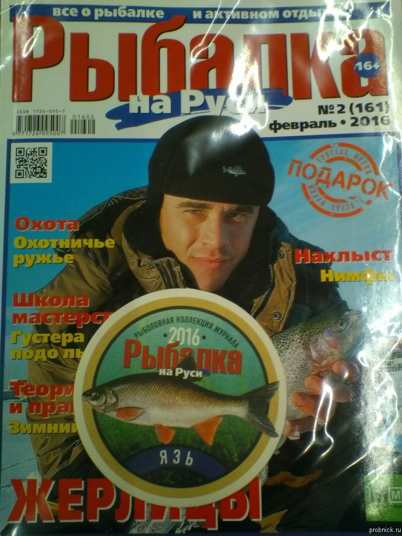 rubalka_na_rusi_fevral_2016