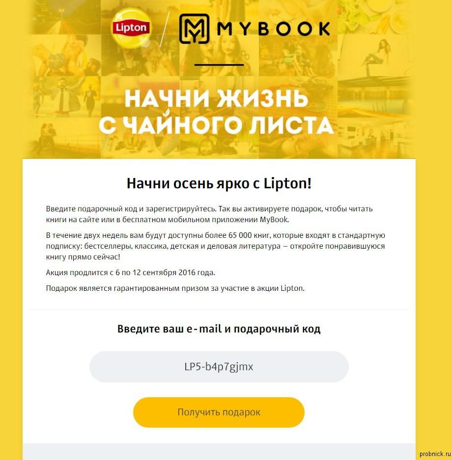 mybook1