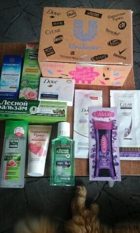 beauty_box_spectr_photo